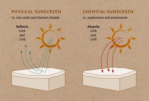 cách chọn kem chống nắng cho da dầu 1